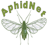 AphidNet